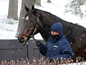 Profit Difficult to Achieve at January Sale
