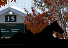 Record Keeneland Auction Ends