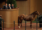 Keeneland November Sale Day 3 Wrap