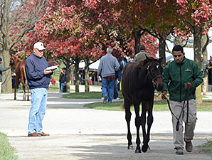 Keeneland Gross Passes 2012 Total on 5th Day
