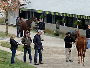 Keeneland November Rolls to More Big Gains
