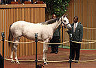 Keeneland Sale Figures Remain Strong Saturday