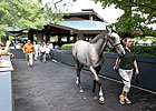 Keeneland September - Day 1 Wrap-Up 9/9/2013