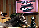 $2.2 Million Colts Lift Keeneland Book 1