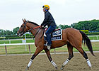 Keen Ice in Two-Mile Jog at Belmont Park
