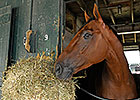 Keen Ice Tired After Travers, 'Classic' Ahead