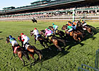 Keeneland Projects 45,000 for Breeders' Cup