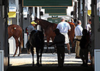 Some Yearlings to Note at Keeneland September
