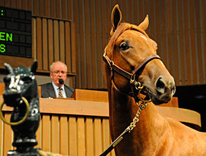 Multimedia Coverage Set for September Sale