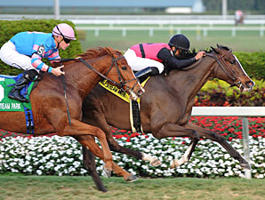 Keertana in the 2011 Very One Stakes.