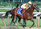 Jim Dandy, Diana Stars Come Out in Good Shape
