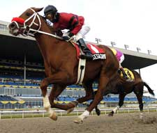 Kesagami Wins Woodbine's Coronation Futurity on Front End