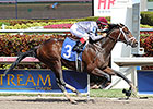 Khozan Impresses Again at Gulfstream Park