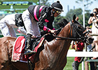 Kid Cruz Works Toward Travers Stakes