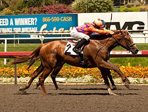 Killer Graces wins the 2011 Landaluce.