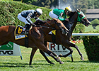 New York-Bred Turf Stars Set for Sunday