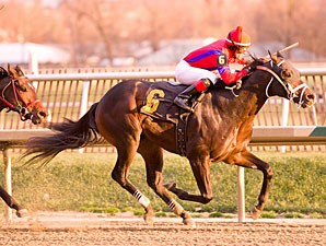 King and Crusader, 16-1, Steals MD Juvenile