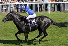 Kingsgate Native Disrespects His Elders in Nunthorpe Stakes