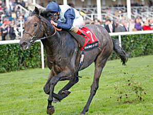 Kingston Hill Proves Merit of Mastercraftsman