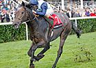 Kingston Hill Clear Racing Post Trophy Winner