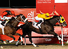 Bejarano to Guide Kinsale King in &#39;Shaheen