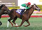 Saratoga Sale Topper Wins First Race