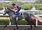 Kip Deville Has Big Chance in HK Mile