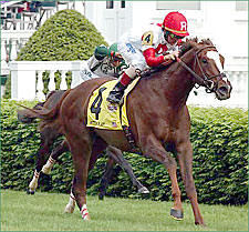 3-Year-Olds Spar in Secretariat