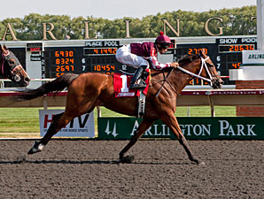 Kitty in a Tizzy wins the 2012 Chicago Handicap.