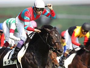 Kizuna wins the Tokyo Yushun (Japanese Derby).