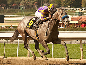 Bay Shore Stakes Debut for Favorite Tale