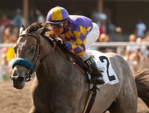 Kobe's Back wins the 2013 Willard L. Proctor Memorial Stakes.