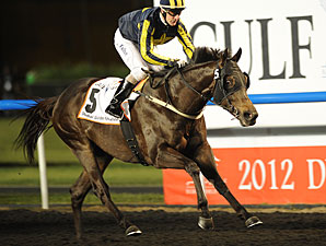 Krypton Factor wins the 2012 Dubai Golden Shaheen.