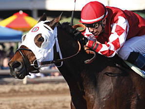 L. A. Weekend wins the 2013 Phoenix Gold Cup.