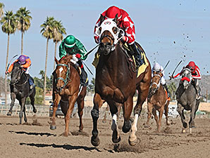 L. A. Weekend wins the 2014 Swift Stakes.