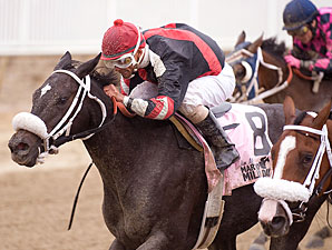 Lil Kiara closed steadily on the speed, grabbing the lead in the final jumps to win the $.100,000 Jim McKay Maryland Million Lassie