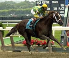 Limehouse Rock Solid in Brooklyn Handicap