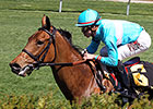 Wonder Again Next Step for Unbeaten Lady Eli