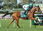 Lady Eli is First BC Starter for New Owners