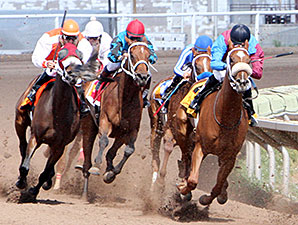 Lady Genius wins the 2014 Bank of Albuquerque Stakes.