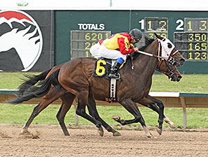 Lady Jila wins the Molly Brown.