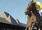 Lady Joanne Preps for Breeders' Cup Distaff
