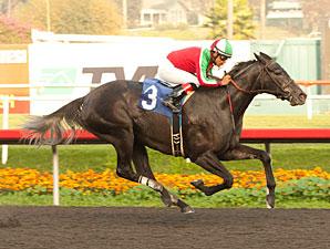 Lady of Fifty wins the 2012 Bayakoa.