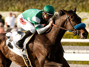 Lady of Shamrock Takes Santa Ana Spotlight