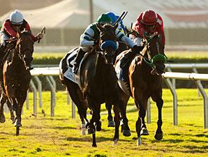 Lady of Shamrock wins the 2012 Del Mar Oaks.