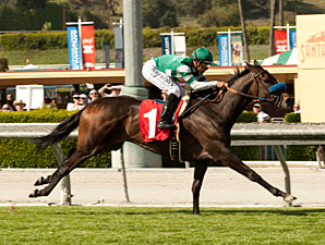 Lady of Shamrock wins the 2012 Providencia.