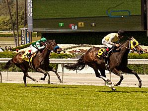 Lady of Shamrock wins the Santa Barbara Stakes via disqualification.