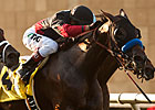 11 Look for Graded Stakes Win in Autumn Miss