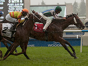 Lafontaine Upsets Toronto Cup in Stakes Bow