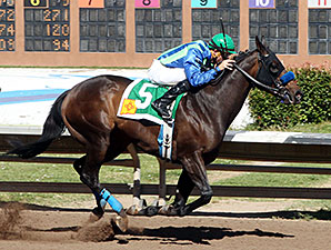 Lakehouse Fun wins the Carlos Salazar Stakes.
